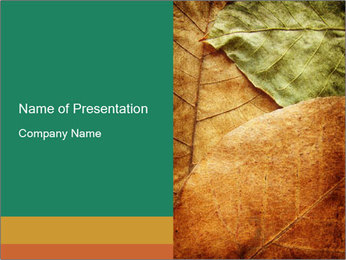 0000061154 PowerPoint Template - Slide 1