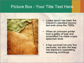 0000061154 PowerPoint Template - Slide 13