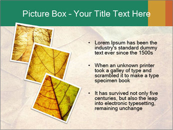 0000061154 PowerPoint Template - Slide 17