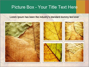 0000061154 PowerPoint Template - Slide 19