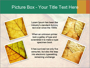 0000061154 PowerPoint Template - Slide 24