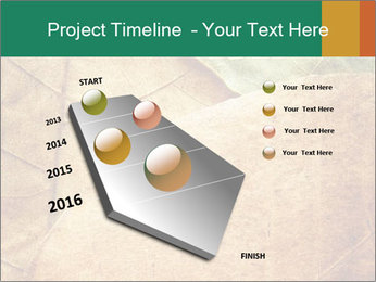 0000061154 PowerPoint Template - Slide 26