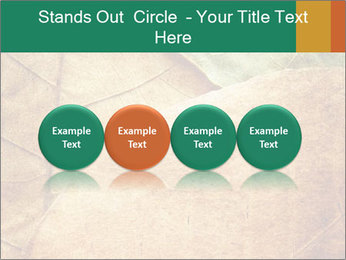 0000061154 PowerPoint Template - Slide 76
