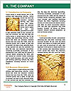 0000061154 Word Template - Page 3