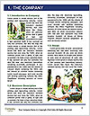 0000061158 Word Template - Page 3