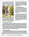 0000061158 Word Template - Page 4
