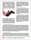 0000061178 Word Templates - Page 4