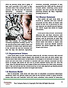 0000061179 Word Templates - Page 4