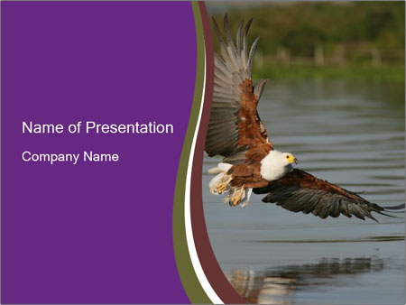 0000061180 PowerPoint Template