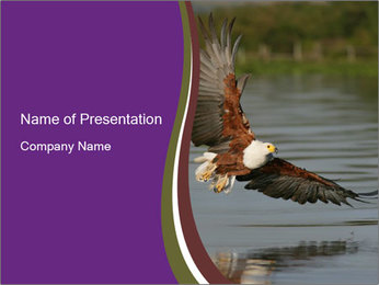 0000061180 PowerPoint Template - Slide 1