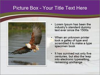 0000061180 PowerPoint Template - Slide 13