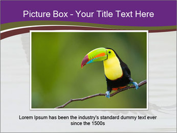 0000061180 PowerPoint Templates - Slide 16