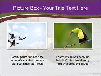 0000061180 PowerPoint Template - Slide 18