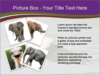 0000061180 PowerPoint Templates - Slide 23