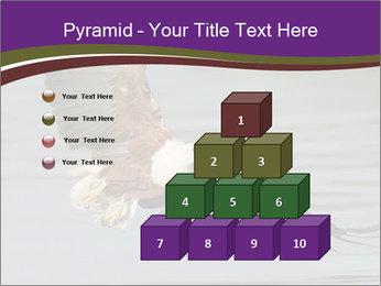 0000061180 PowerPoint Templates - Slide 31