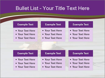0000061180 PowerPoint Templates - Slide 56