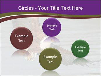 0000061180 PowerPoint Templates - Slide 77