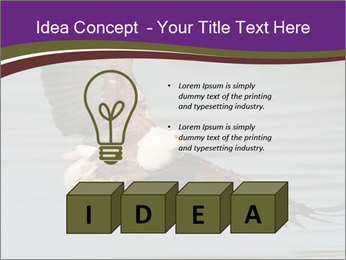 0000061180 PowerPoint Template - Slide 80
