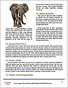 0000061180 Word Templates - Page 4