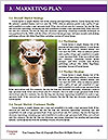 0000061180 Word Templates - Page 8