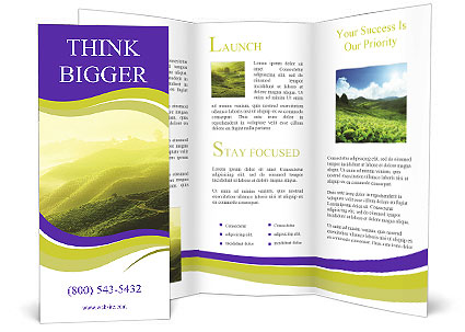 0000061182 Brochure Template