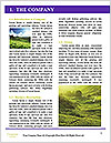 0000061182 Word Template - Page 3