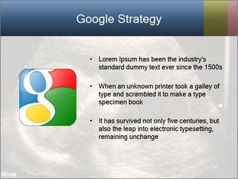 0000061193 PowerPoint Templates - Slide 10