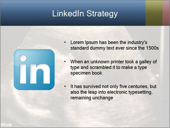 0000061193 PowerPoint Templates - Slide 12
