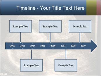 0000061193 PowerPoint Templates - Slide 28