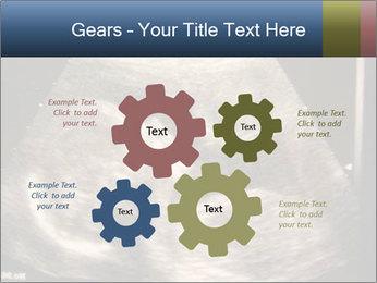 0000061193 PowerPoint Templates - Slide 47