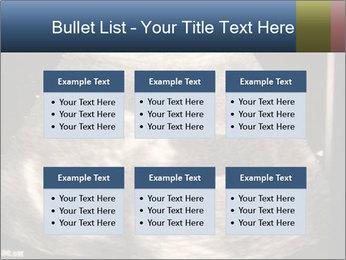 0000061193 PowerPoint Templates - Slide 56