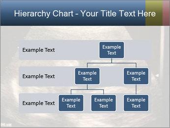 0000061193 PowerPoint Templates - Slide 67