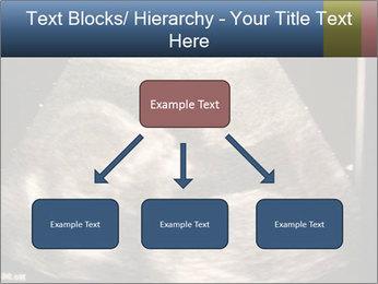 0000061193 PowerPoint Templates - Slide 69