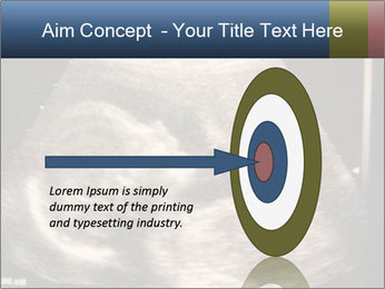 0000061193 PowerPoint Templates - Slide 83