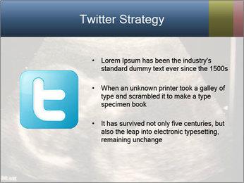 0000061193 PowerPoint Templates - Slide 9