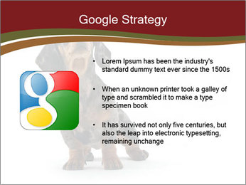 0000061205 PowerPoint Template - Slide 10