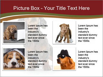 0000061205 PowerPoint Template - Slide 14