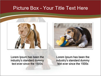 0000061205 PowerPoint Template - Slide 18