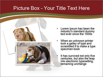 0000061205 PowerPoint Template - Slide 20