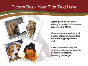 0000061205 PowerPoint Template - Slide 23