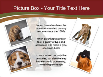 0000061205 PowerPoint Template - Slide 24