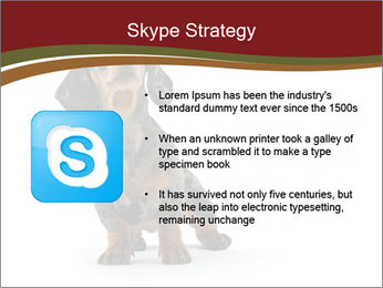 0000061205 PowerPoint Template - Slide 8