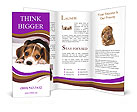 0000061210 Brochure Templates