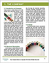 0000061213 Word Templates - Page 3