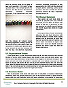0000061213 Word Templates - Page 4