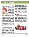 0000061227 Word Templates - Page 3