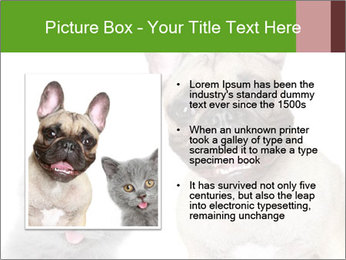 0000061229 PowerPoint Templates - Slide 13