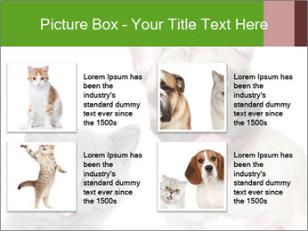 0000061229 PowerPoint Templates - Slide 14