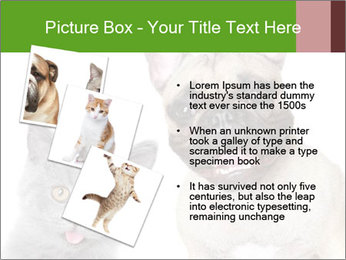 0000061229 PowerPoint Templates - Slide 17