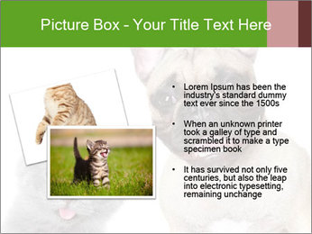 0000061229 PowerPoint Templates - Slide 20